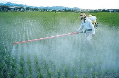اسمدة ومبيدات